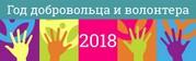 2018 Год волонтёра